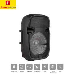 15inch Kunststoff aktiv HiFi Party Lautsprecher Box