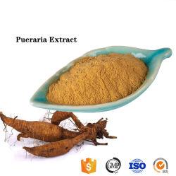 Природные Radix Puerariae извлечения/ Radix Puerariae Lobatae извлечения 40% 80% Isoflavone Puerarin
