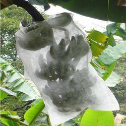Tecido de polipropileno não tecido Spunbond cobrindo em banana