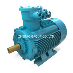 IE3 driefasige explosieveilige AC elektrische inductiemotor