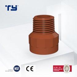 Pph BSPT Thread tuyau d'alimentation de l'eau /Raccords de tube F/M Tianyan mamelon des accessoires de toilette de l'IRAM 13478