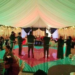 임시 일렉트릭 DJ 화이트 스파클 LED 댄스 플로어 조명을 구매하세요 인도 웨딩 하인 가격
