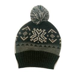人の冬の暖かい方法ポンポンが付いている編む雪片のジャカード帽子