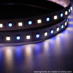 LED SMD 5 em 5 5050Lascas 1 LED 14,4W/M 60LEDs/M Rgbww IRC>90 Alto Brilho Fexiable Luz decorativa tiras rígidas de LED