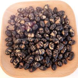 HACCP/Halal Natur-Imbisse brieten schwarze Bohnen