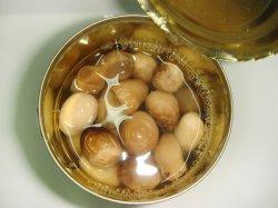 Здоровье питание консервированных грибов соломы в легко открыть крышку багажника