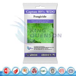 Le roi Quenson Disease Control fongicide captane Captan de 95 % 50 % wp