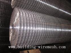 Гальванизированные сварной проволочной сетки в Anping Supllier