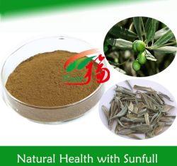 고품질 20%-80% Oleuropein/5%-40% Hydroxytyrosol/올리브 잎 추출