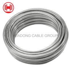 Bwg 18 20 21 collegare obbligatorio di Gi del ferro galvanizzato 22 elettrotipie