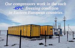 45kw 0.4Bar 7bar Chloromethane gás metano do Compressor do compressor Booster (VW-11.7/0.4-7)
