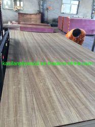 Birch Contraplacado comercial de madeira contraplacada de melamina com mobiliário