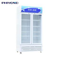 Phyond Pjyl-1000 512L ダブルガラスドアアップライト飲料ディスプレイフリーザー 飲み物クーラービール冷蔵庫