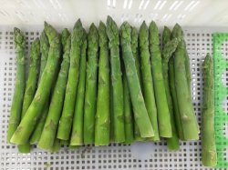Fábrica de procesamiento, Shandong Fangxin alimentos congelados, los espárragos verdes, 16-22mm, 17cm de largo, grado a, los vegetales congelados, alimentos congelados