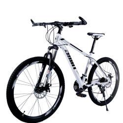 형식 성숙한 휴대용 분리가능한 Multi-Speed 합금 프레임 도시 도로 자전거