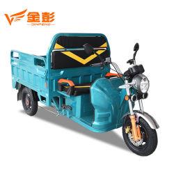 LED 맨 위 가벼운 디스크 브레이크 3 바퀴 전기 화물 세발자전거 차 무거운 선적 트럭