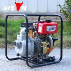 Зубров 2 дюйма дизельного двигателя электрический небольшой водяной насос
