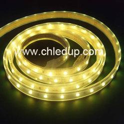 12V 24V Ledstrip SMD 3528 2835 5050 3838 wasserdichter LED Streifen für Weihnachtsdekoration-Licht