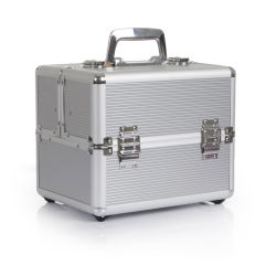 Caja de herramienta de aluminio de alta calidad cosmética de la belleza (TOOL-1001)