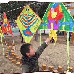 カスタム熱い販売のブランクのデッサンDIYはイベントのための凧をからかう