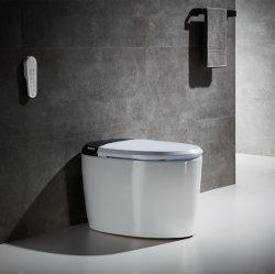 세라믹 목욕탕 고정되는 전기 Bidet Wc 한 조각 지적인 화장실