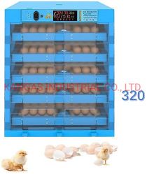 Bestes Preis-Huhn/Ente/die Türkei-/Wachtel-Ei-Ausbrütung-Maschinen-Geräten-China-Lieferant