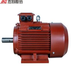 Ie 3 프리미엄 효율성 삼상 감응작용 기어 흡진기를 위한 비동시성 AC 전동기