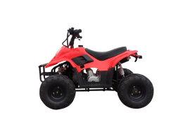 Moto Utility Quads 50cc Mini ATV para diversão (MDL GA002-5)