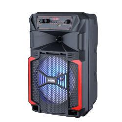 새로운 최신 판매 가정 극장 다중 매체 무선 Karaoke 승진 직업적인 Portable PA 트롤리 소형 Bluetooth 오디오 액티브한 스피커