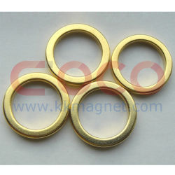 Кольцо NdFeB постоянные магниты с RoHS утвержденных