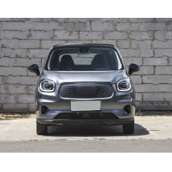 2021 elektrische Auto's voor het Elektrische voertuig Hete SUV van het Gebruik van de Familie