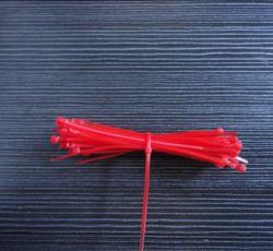 """Nylon66 bindt de Kabel 4.8X200mm, Witte 8 """", Zwart, Rood, Blauw, Geel"""