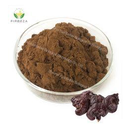 Le champignon Reishi pur et naturel extrait de la poudre de polysaccharides Ganoderma lucidum