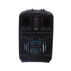段階のTF/USB/Aux/FMのラジオが付いている携帯用動力を与えられたSubwoofer Bluetooth LEDのスピーカー