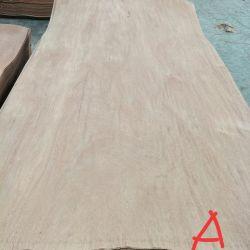 Natürliches ausgeführtes Pappel Gurjan hölzernes Keruing Gesichts-Furnier-Blatt für Furnierholz