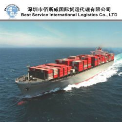 Worldwide/Freight Forwarder (FCL 20 ' 40 ')への出荷Service Fromシンセン