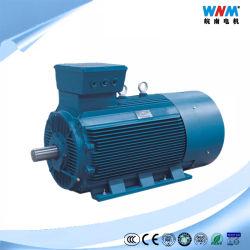 Isolamento asincrono a tre fasi F del motore elettrico IP54 di formato medio di alto potere di CA di bassa tensione di Ylv per il trasportatore Ylv400 2-4 400kw di metallurgia di fabbricazione della carta del cemento