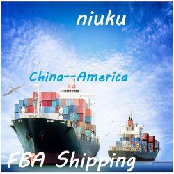 وكيل محترف السعر الاقتصادي الشحن البحري من الصين إلى أمريكا