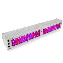 Lo spettro completo LED coltiva indicatore luminoso impermeabile IP65 della barra chiara il crescente