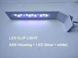 Collier blanc et bleu LED Lampe pour Fish Tank