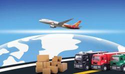 De internationale Dienst Wereldwijd van de Spaarder van UPS Huis-aan-huis aan Europa en Noord-Amerika met Geschikte Levering