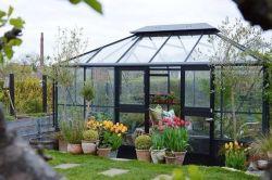 منزل منخفض التكلفة حديقة حديقة جرينهاوس