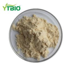 عالي الجودة هيدرومطي بروتين القمح/هيدرومطي بروتين