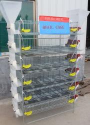 아연 도금 닭고기 육종 농장 기계류 배터리 레이어 케이지(자동) 수유