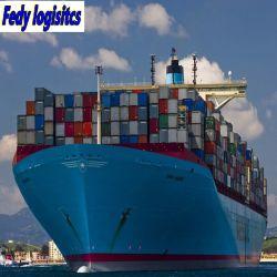 El envío de la logística de mar de China agente transitario/LCL FCL a Fiji/Nueva Zelanda/Islas Cook/USA Air Cargo/estación/Ocean Consignatarios Fba Amazon