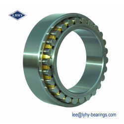 Full Complement Cylindrical Roller Bearing with Double Rows (NNCF5080CV)