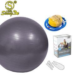 Sfera ecologica di yoga della gomma piuma di sport del PVC 4*6*9 del gioco su ordinazione di ginnastica