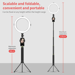 Tik Tokの立場および電話ホールダーとFoldableピンクの美LEDの円のリングライト