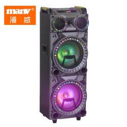 Double Portable puissant de 10 pouces professionnel DJ en bois de l'Orateur