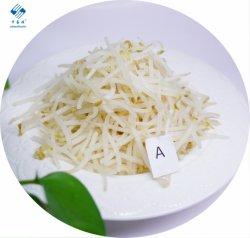 IQF gefrorener grüner Mungobohne-Sprössling